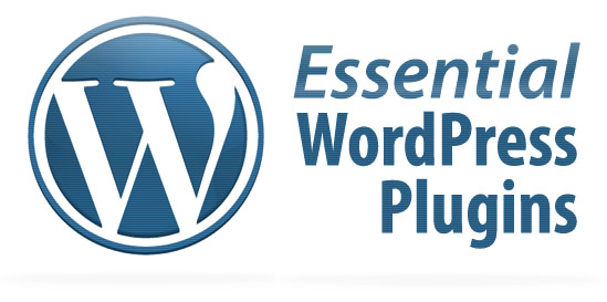 Direct download WordPress-Plugins